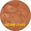 AUTUMN LEAVES - Shimmer Eyeshadow - CLEARANCE