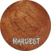 HARVEST- Shimmer Eyeshadow - CLEARANCE